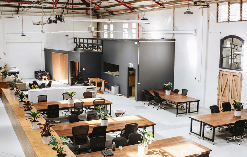 Why professionals are thriving in Co-working spaces