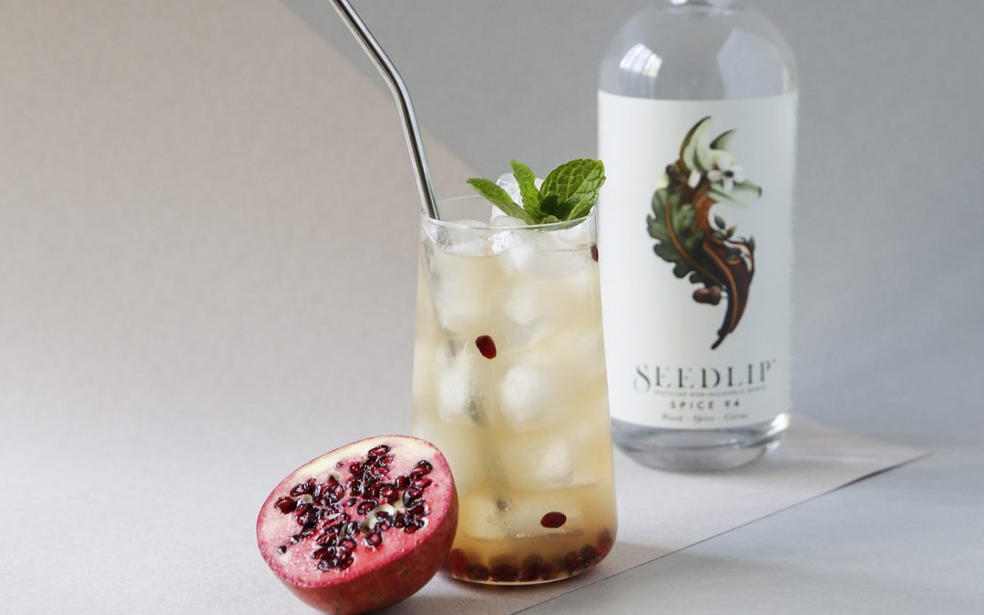 Seedlip – What to drink when you're not drinking.