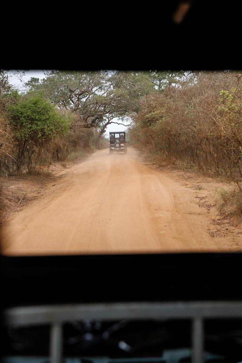 Wild-Coast-Lodge-Safari